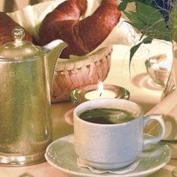 Frühstück im Burggartenpalais